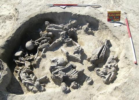 Az állattemető feltárás alatt Hódmezővásárhely határában (forrás:museum.hu)
