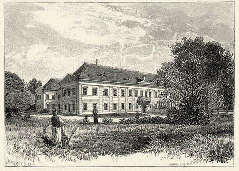 A nagykárolyi kastély egy 19. századi metszeten